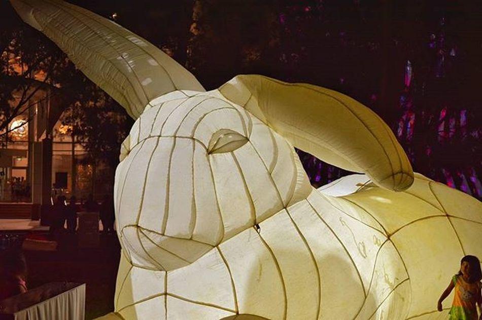 Enlighten2016 Canberralife Thiscanberranlife Canberra Visitcanberra Igerscanberra Sofranksocial Socanberra Iglobal_photographers Vip_world_photo