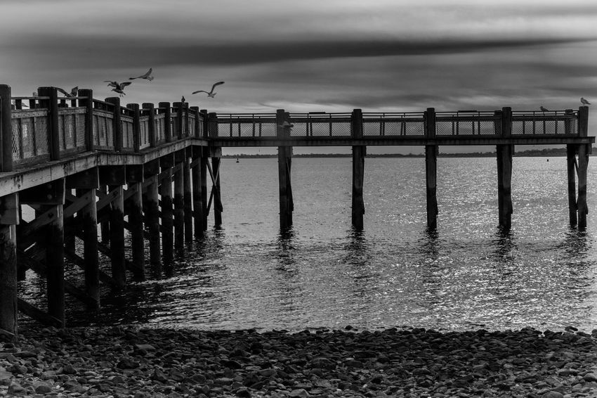 Architecture B&w Beach Beauty In Nature Birds Blackandwhite Built Structure Cloud - Sky Horizon Over Water Nature Nikon D3300 No People Outdoors Sea Sky Water