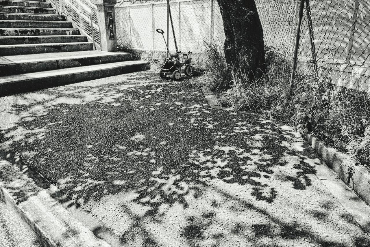 Monochrome Blackandwhite Photography Wood Shadow Yokohama, Japan Sony Sony Rx100 Rx100 Train Station Three Wheeler Black And White Gray Life City Life City Scapes 横浜 弘明寺 弘明寺駅 EyeEm Best Shots - Black + White EyeEm Bnw Hdr_Collection Tree Shadow