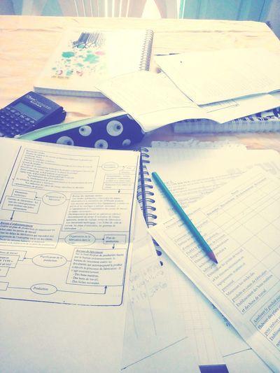 Study Time Gestion Hard Working School
