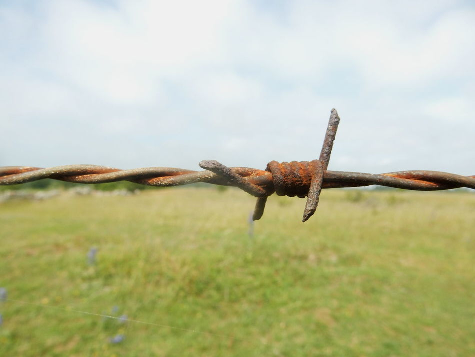 barbed wire against landscape Fench Barbed World Barbed Wire Close Up Barbed Barbedwire Rustic Style Rustic Barbed Wire Background Backgrounds Showcase June