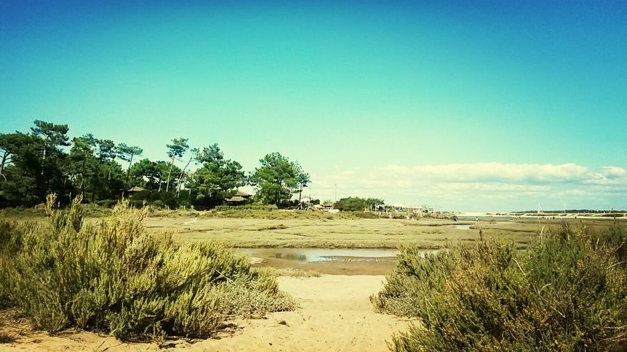 Holidays At The Beach Cap Ferret