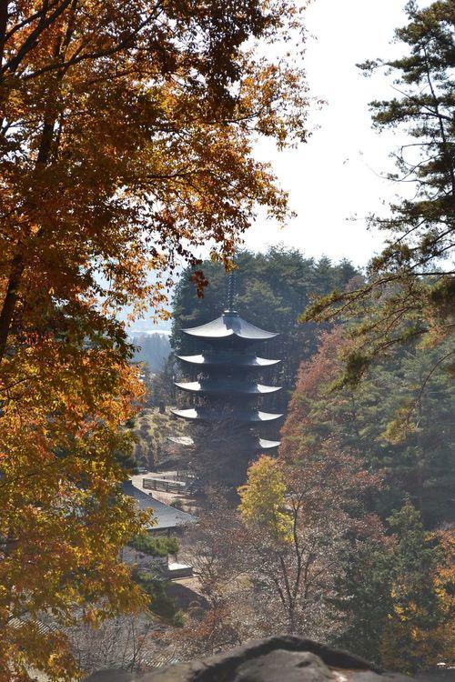 Autumn Iwate Nature No People Outdoors Praying Temple Tohno(遠野) 寺 岩手 福泉寺 秋 紅葉