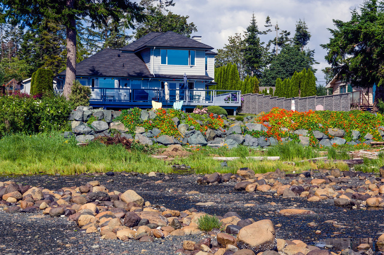 Kilmarnock House from the Beach Architecture Building Exterior Built Structure Day Flower House Nature No People Outdoors Plant Seawall Sky Tree