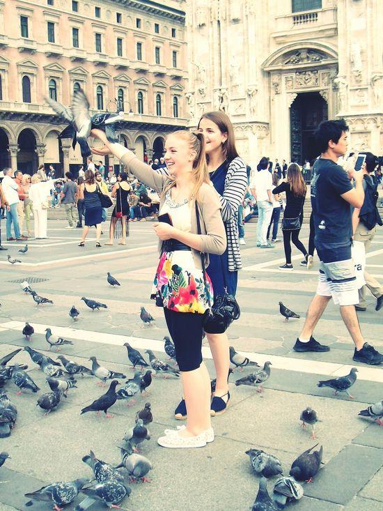 Milano Milan Italy Piazza Del Duomo Feeding Pigeons Duomo Di Milano Showcase February The Tourist