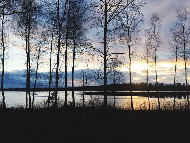 Roadtrip sweden march 2017 Sky Sunset Nature Scenics Tranquility Beauty In Nature No People Day March 2017 Sweden-landscape Sweden Outdoors Dusk Frozen Lake Frozen Nature Lake Winter