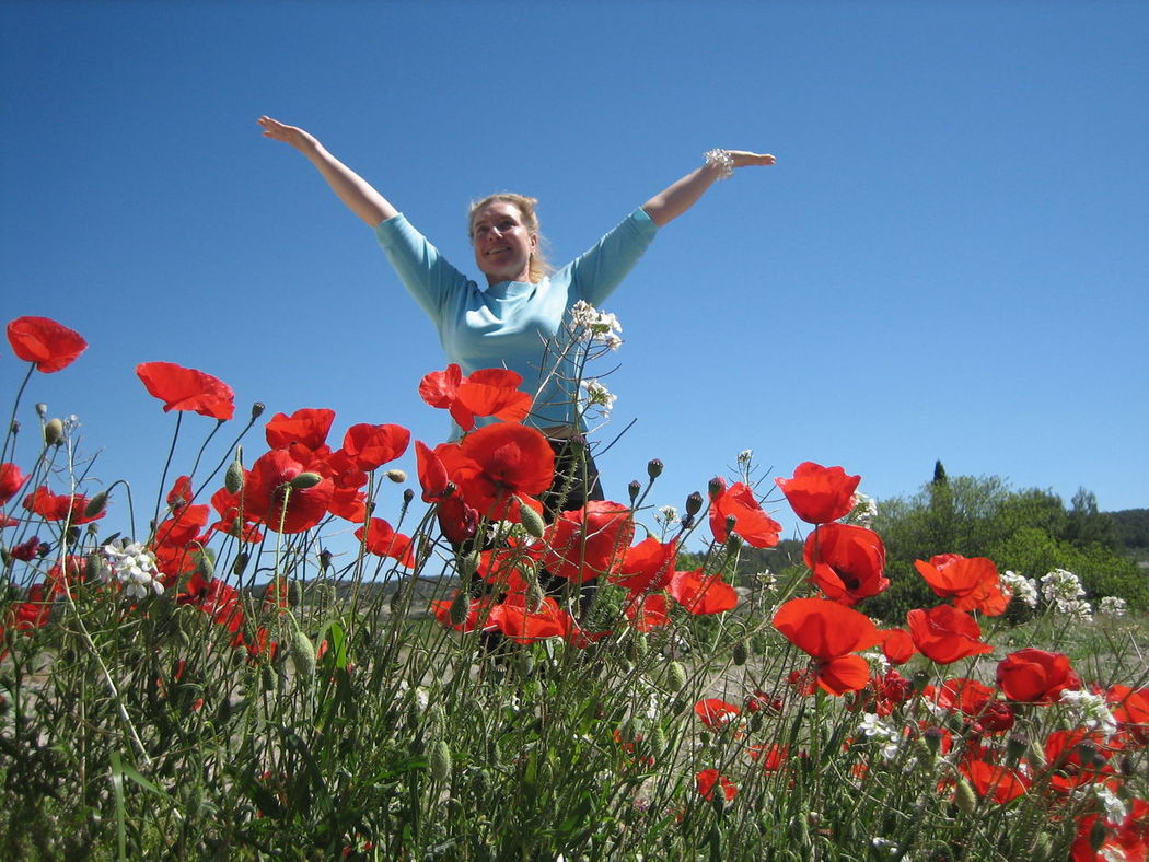 Happy Person Happy Woman Poppy Flower Poppy Red Blooming Clear Blue Sky Field Low Angle View Flower Field Clear Sky Amapolas мак растение мак Petal Freshness Beauty In Nature Fragility Growth Nature Amapolas Rojas Outdoors