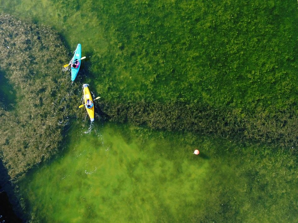Aerial Shot Aerial View Kayaking EyeEm Best Shots Dronephotography Sport Exercise Nature_collection Kayak Escaping Excercising Taking Photos Lookingup Watersports Showcase: February