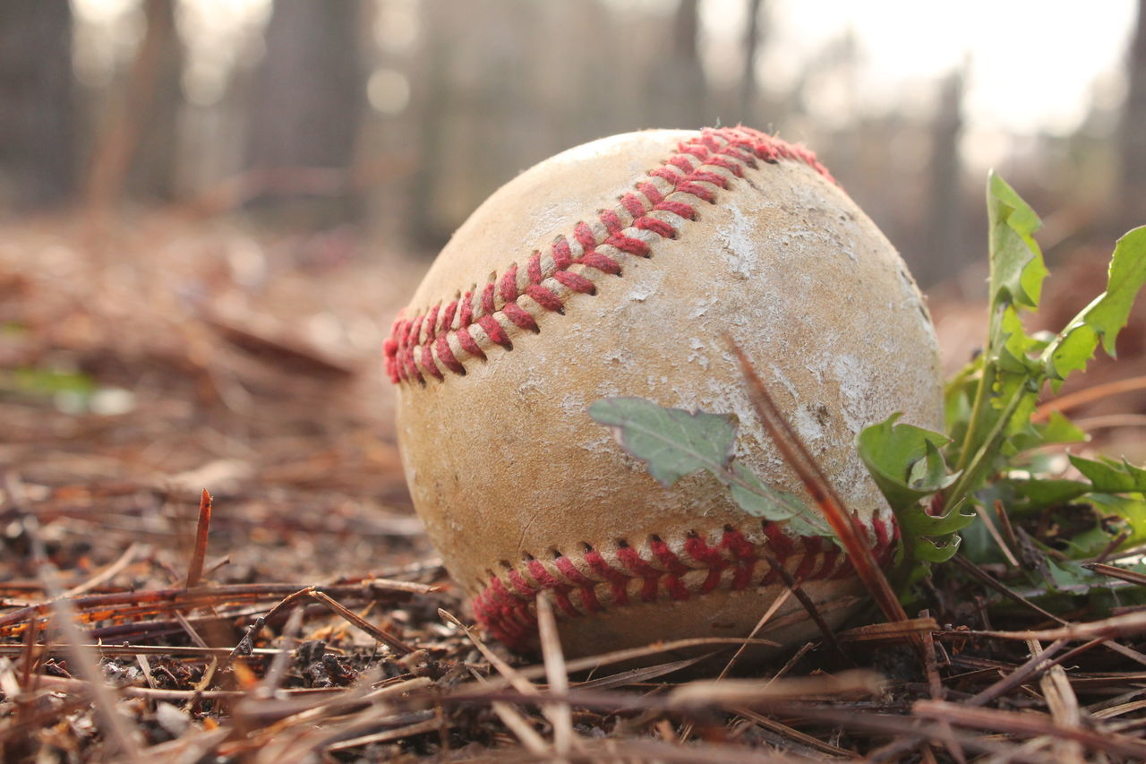 Beautiful stock photos of baseball, Ball, Baseball - Ball, Baseball - Sport, Close-Up