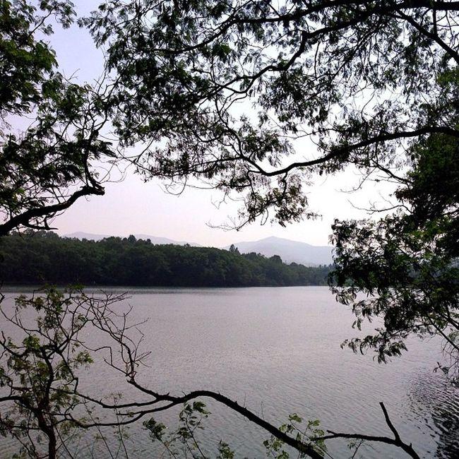 Pune's park animals lake