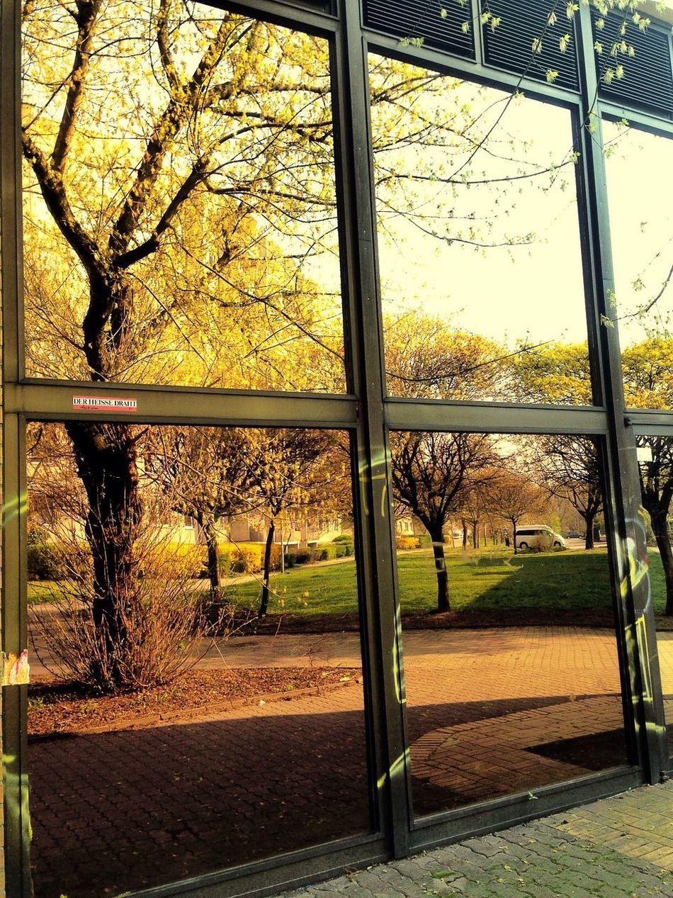 Reflection Berliner Ansichten