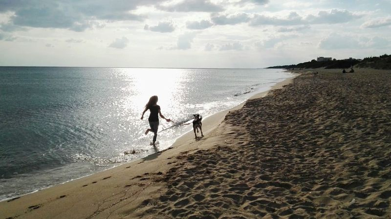 Sea Dog DogLove Bestfriend Sunintheface Beach Saturday Afternoon Saturday Afternoon September