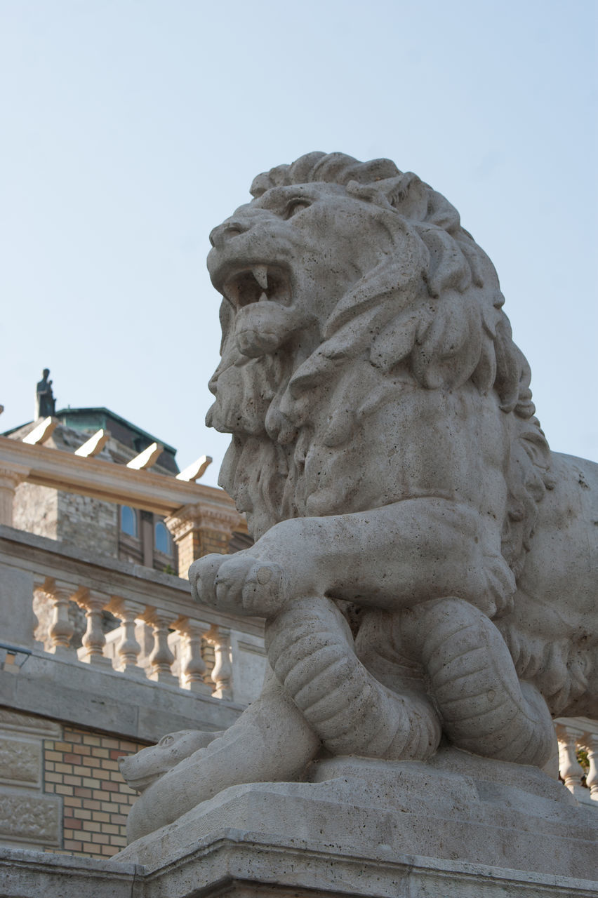 sculpture, statue, art and craft, low angle view, no people, outdoors, day, clear sky, built structure, building exterior, lion - feline, architecture, sky, close-up