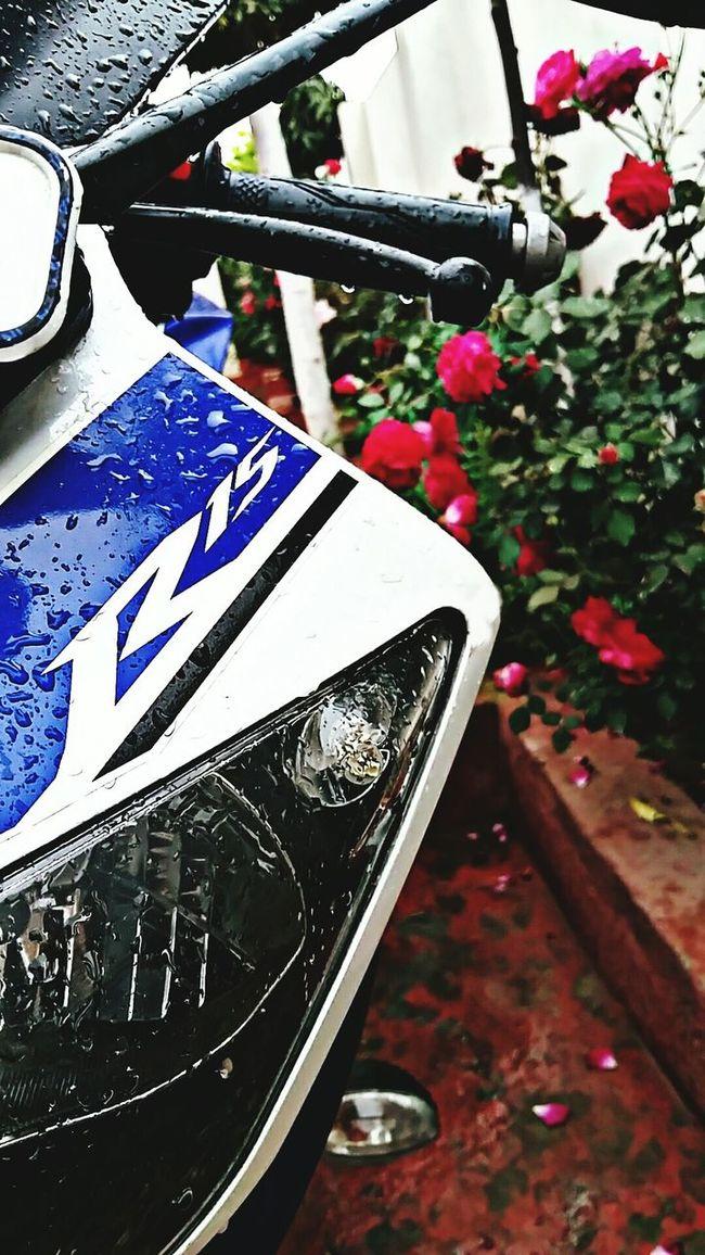 Yamaha R15 racing instrict ! First Eyeem Photo