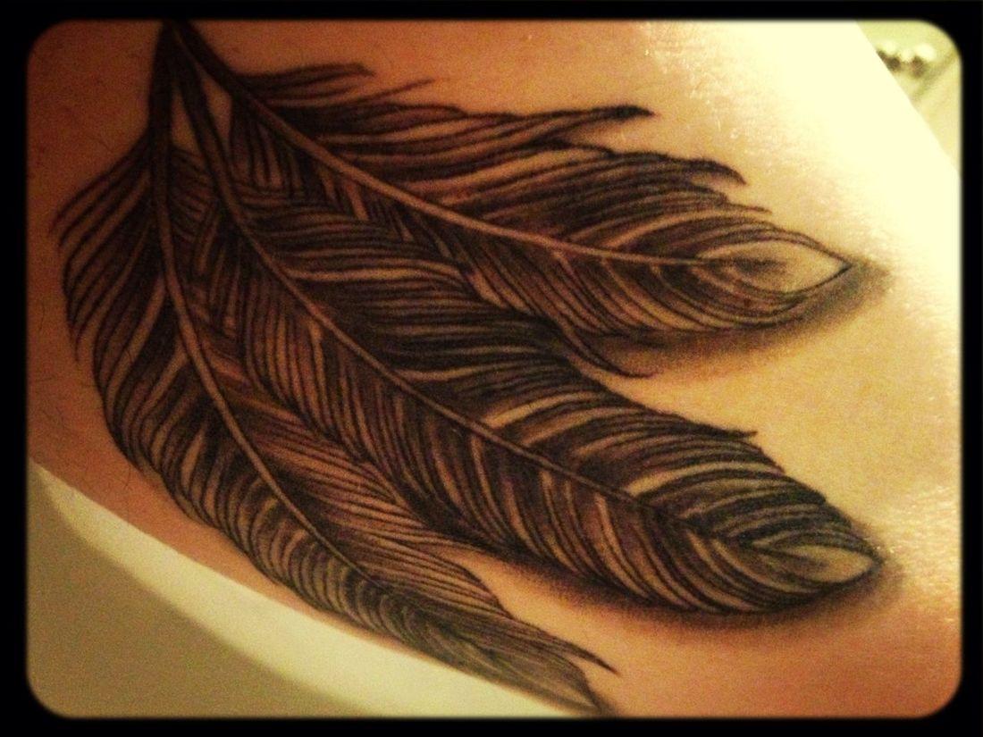 Tattoo Feather Tattoo Feathers