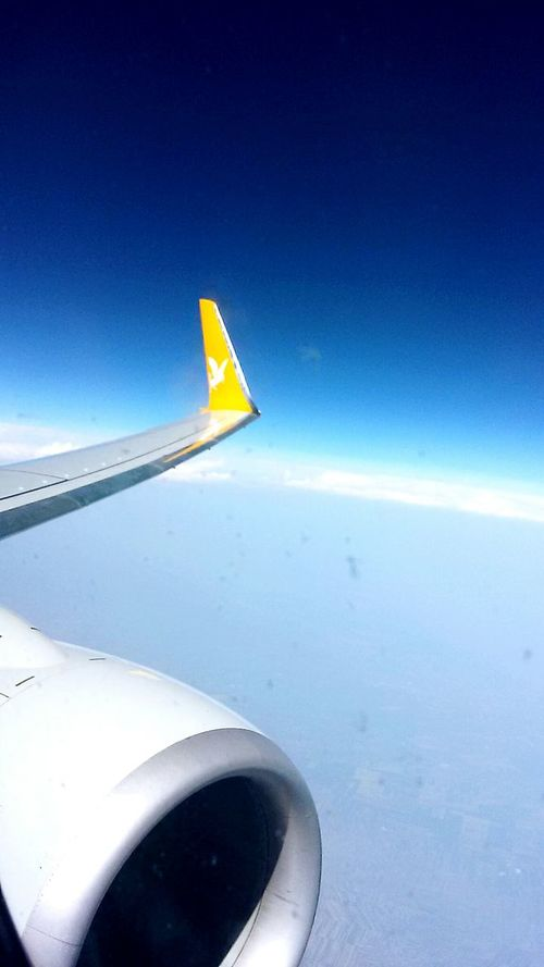 EyeEm Best Shots Returning Home Planes In The Sky Sky And Clouds Sky_collection Looking Out Of The Plane Blue Sky Pegasus Airlines