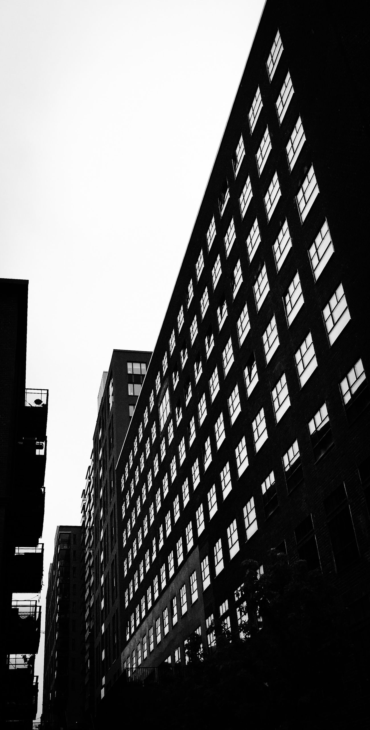 Windows Eye4photography  Black And White Blackandwhite Architecture Monochrome EyeEm Best Shots Windows