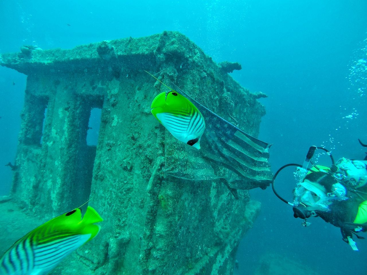 Man Scuba Diving By American Flag On Shipwreck With Fish In Sea