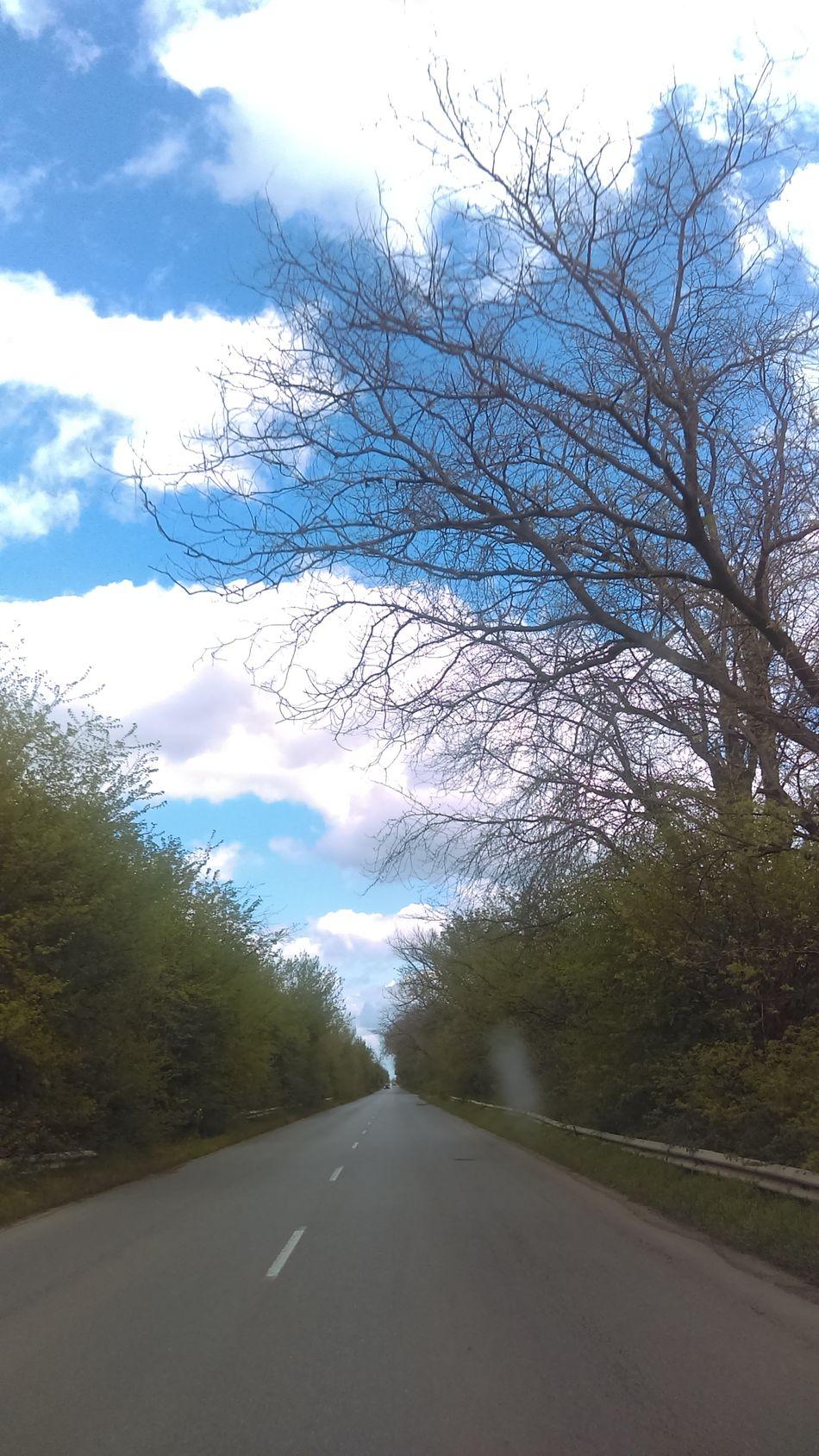 On The Road Road Cloud - Sky Sky Tree Roadtrip Roadtrips Enjoying Life