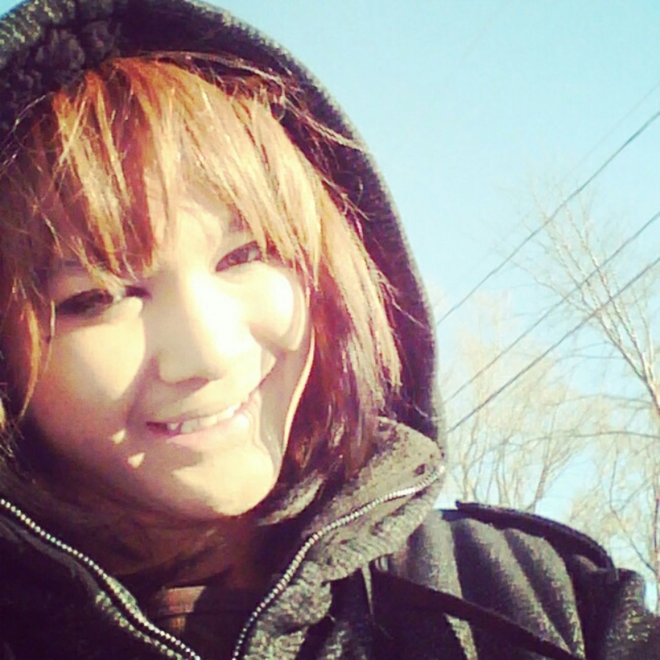 Winter Snow Sun Cold The Yuuki