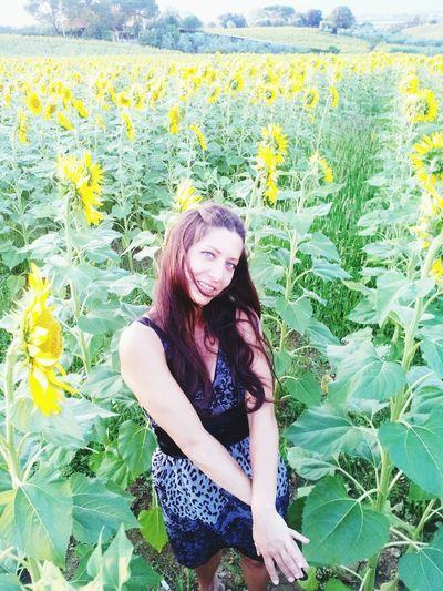 Sunflower VSCO Vscocam