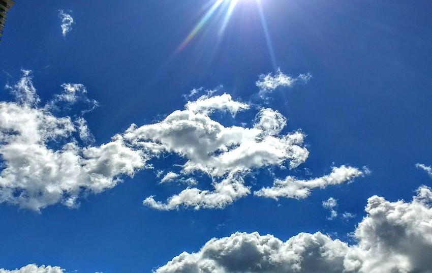 Sunshining Outdoors Blue Skies White Clouds EyeEm Nature Lover EyeEm Market © The Week On EyeEm