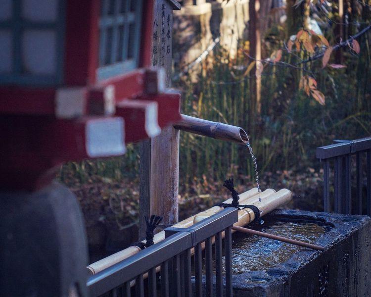 無事を祈る Chozuya Shrine Shrine Of Japan Japanese Shrine Japan Photography Japan From My Point Of View Still Life Capture The Moment A Day Of Tokyo Walking Pray Water Wash Chozuya is an area within the precinct of a Shinto shrine or Buddhist temple at which worshippers wash their hands and mouths.