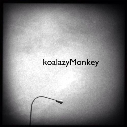 koalazyMonkey at Singapore KoalazyMonkey