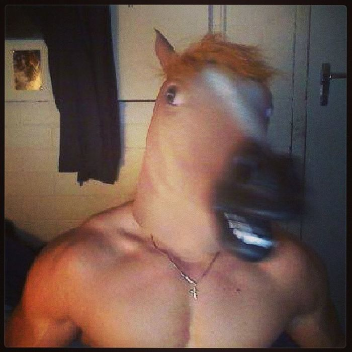 Horse Beastmode Lolz Fail Horsemode Michaelbuble HASHTAG Drinky Hay Farm Animal Trumphair Noob Sundaynight Foreveralone Bored Cantsee 21pilots