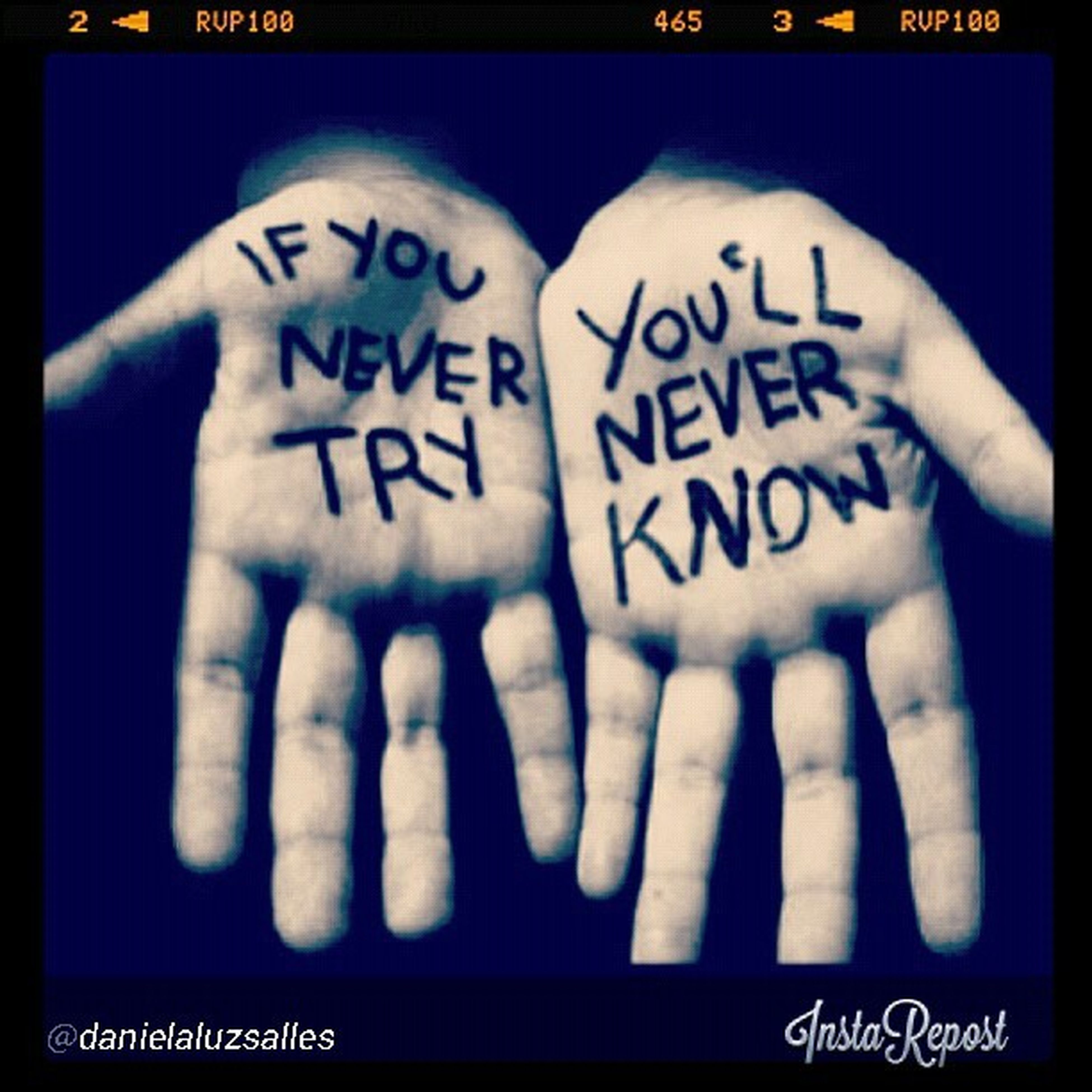 Never try never know Quotes Shaunling
