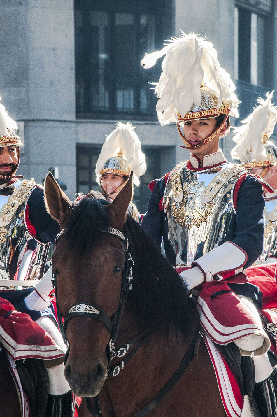 Half view of a mounted cavalery soldier in full ceremonial uniform. Adult Animal Themes Cavalry Cavalry Soldier Ceremonial Costumes Day Editorial  Horse Horses Mammal Military Outdoors People Period Costume Real People Travel Uniform