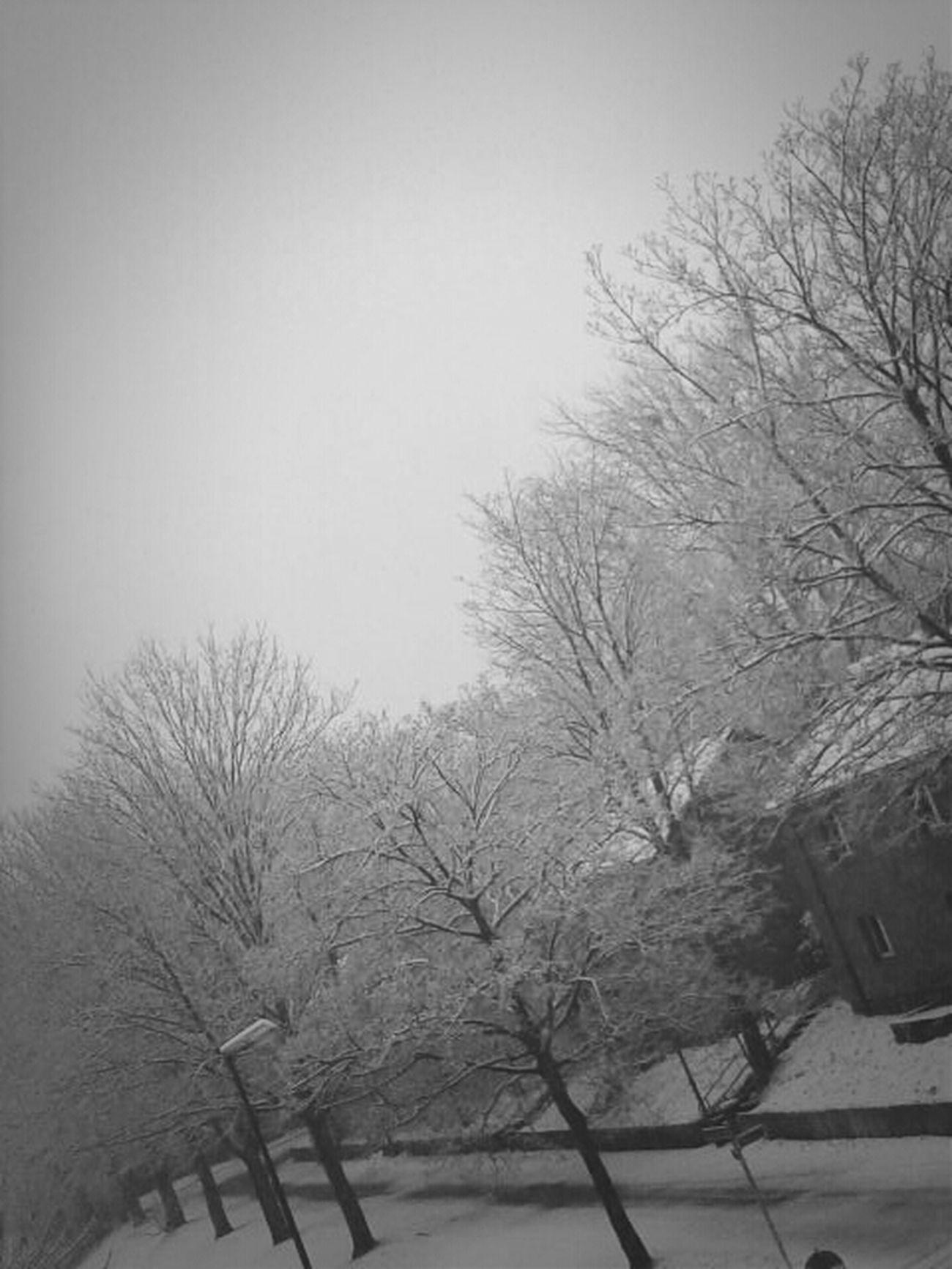 Zum Glueck Kein Schnee Mehr :-))