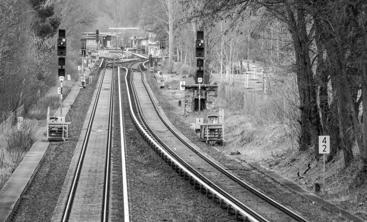 Black And White Complex Day Gleise High Angle View Logistic Mode Of Transport Nature No People Outdoors Rail Transportation Railroad Track Rails Schienen Signal Transportation Transportation Tree Urban Exploration