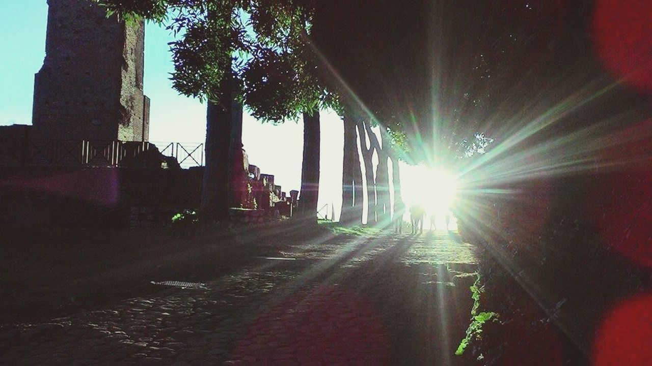 lens flare, sunbeam, architecture, built structure, the way forward, sunlight, illuminated, no people, outdoors, building exterior, tree, city, day, sky