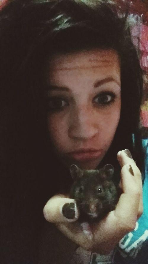 Hamster bae