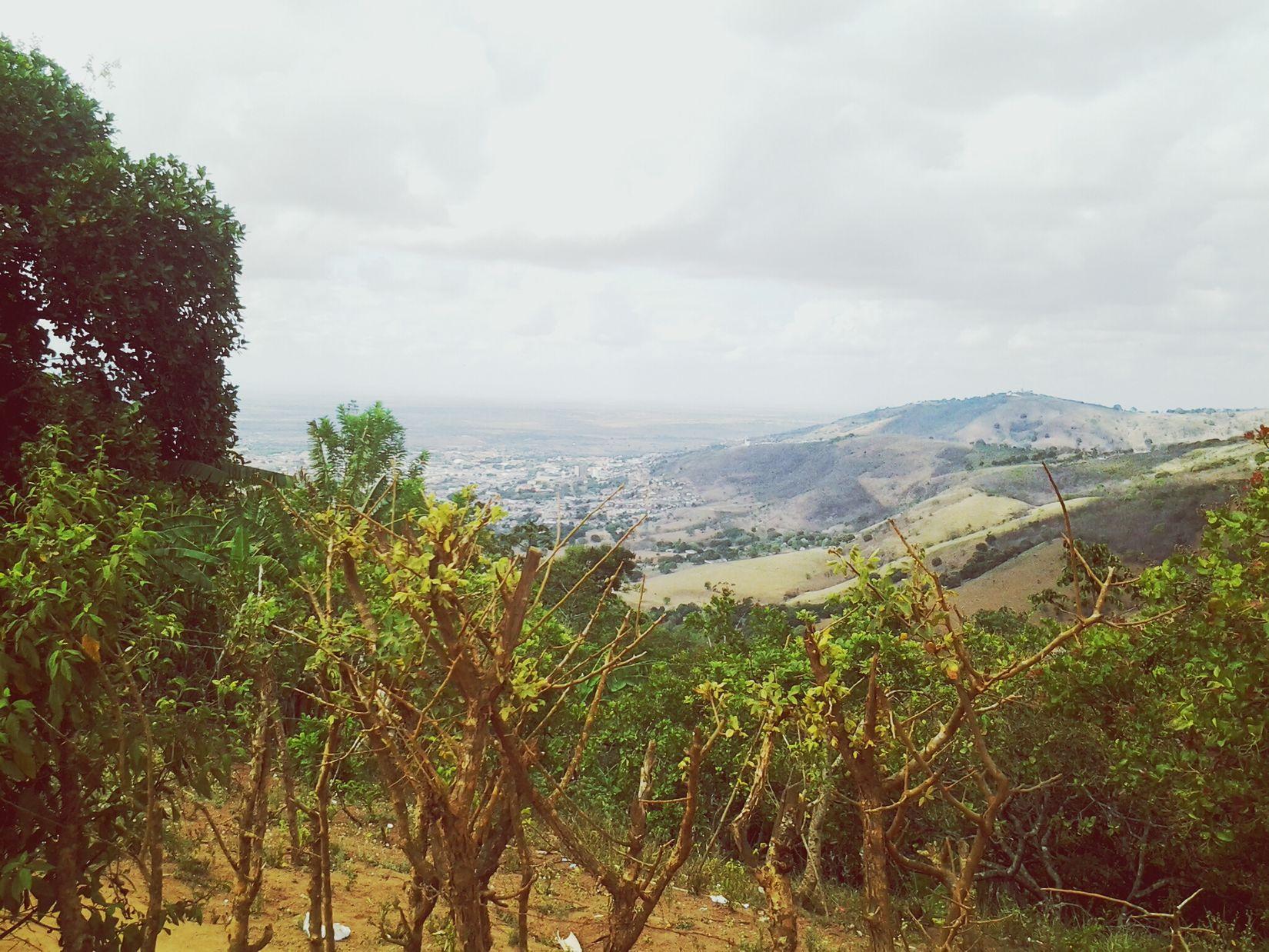Green City Montanha Vegetação