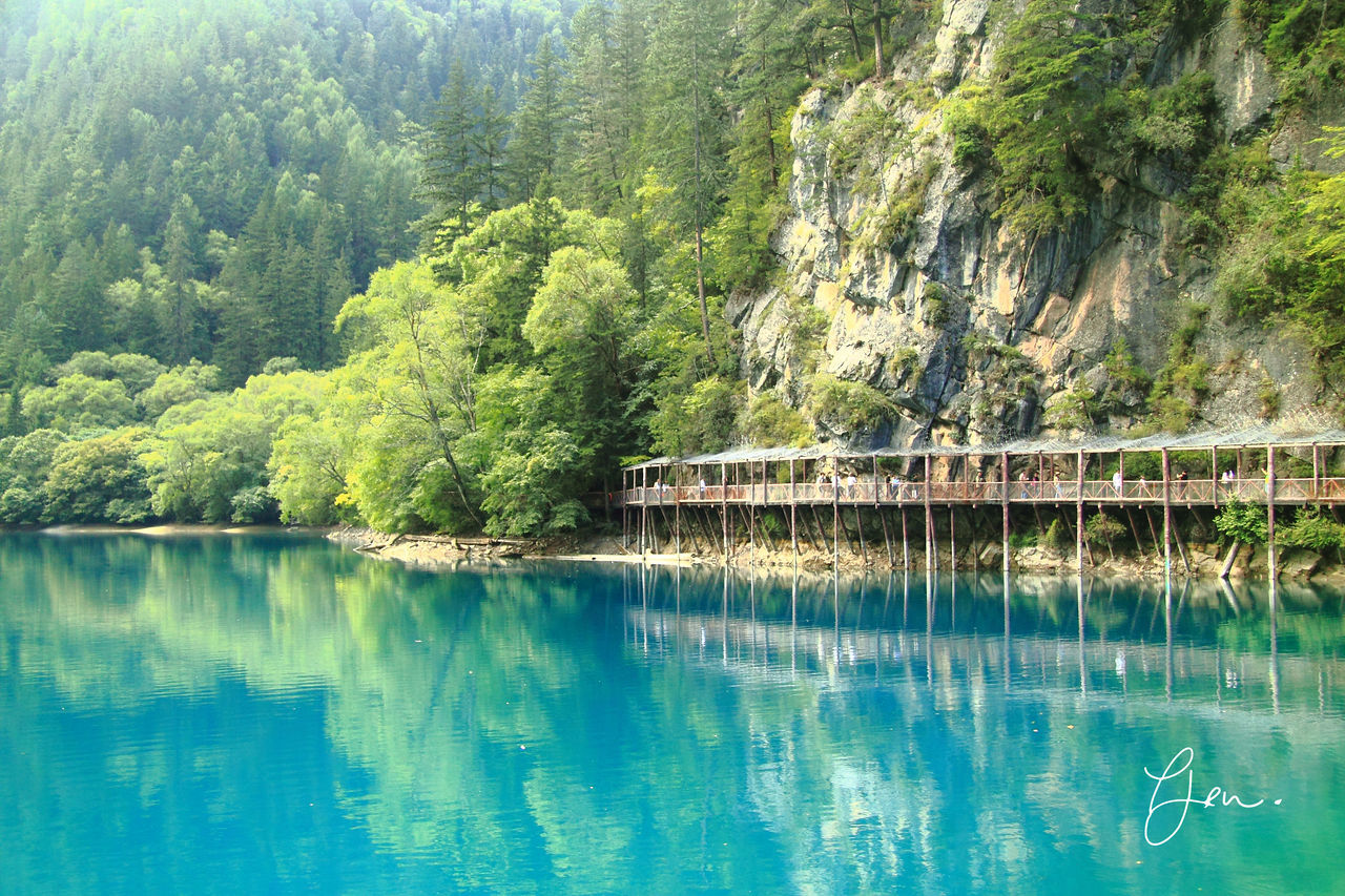 High mineral nature lake close to Tibetan plateau Beauty In Nature China Green Color Jiuzhaigou Lake Nature Nine Village Valley No People Outdoors Reflection Scenics Sichuan Sichuan Province Tranquil Scene Tranquility Tree Water