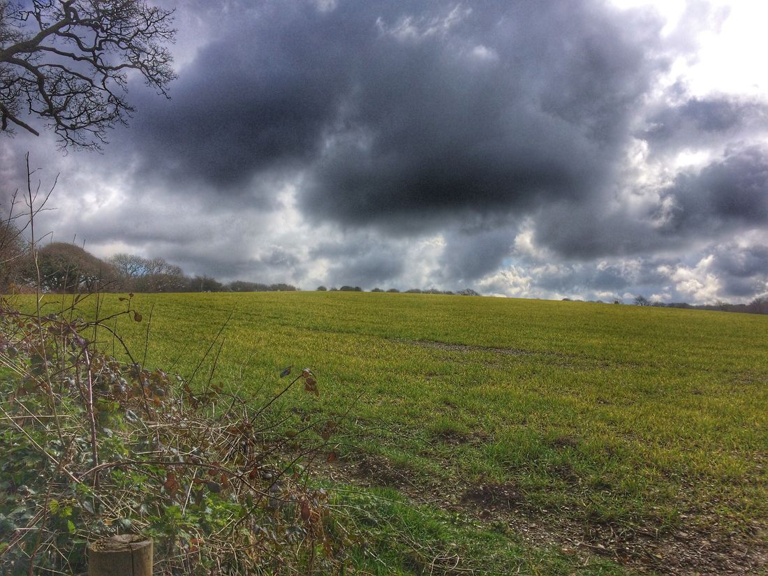 Clouds And Sky Clouds Nature_collection Nature Farmland Farmlife Cornwall Countryside Fieldscape Fields