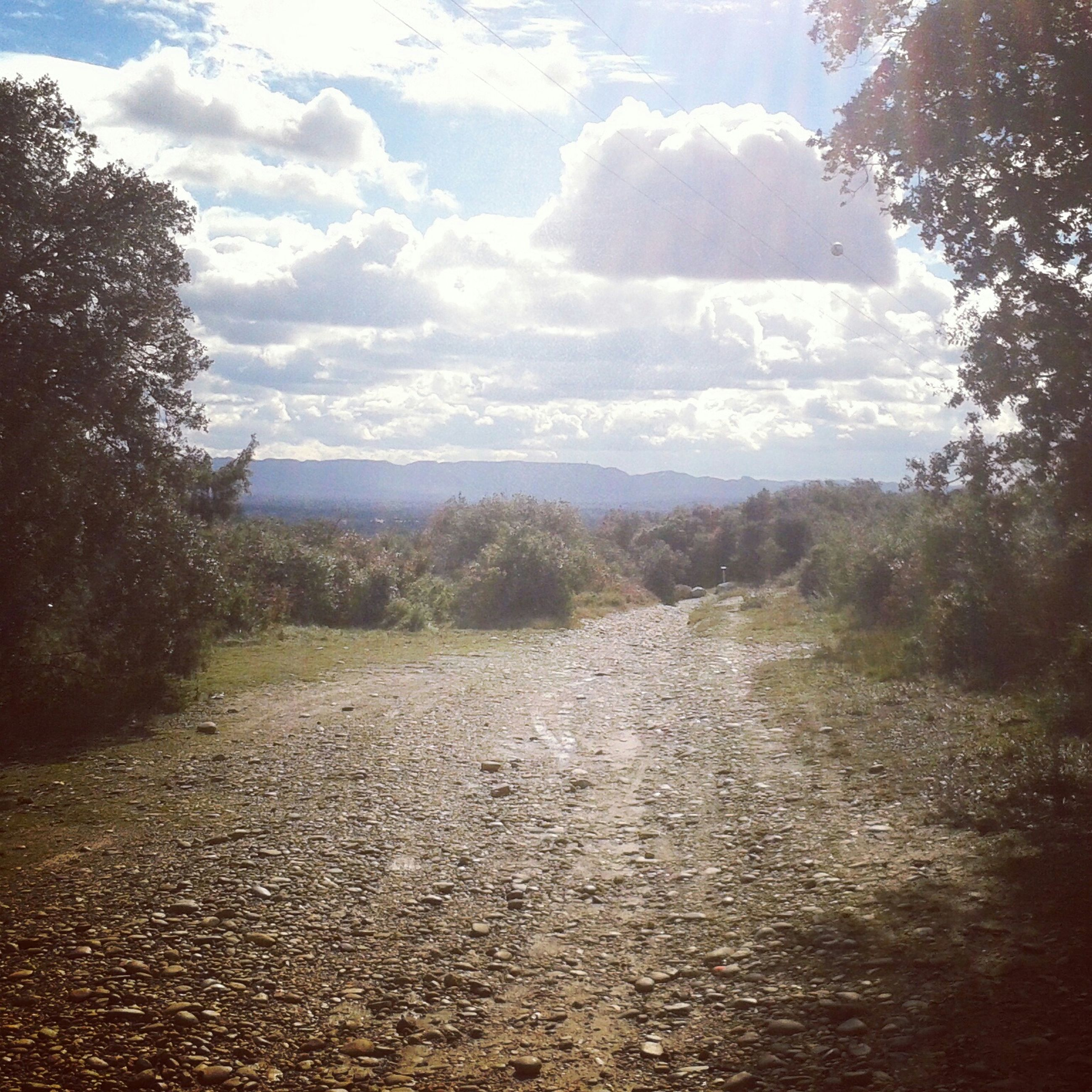 sky, tranquil scene, tranquility, tree, the way forward, cloud - sky, landscape, dirt road, scenics, nature, beauty in nature, cloud, non-urban scene, diminishing perspective, road, cloudy, day, field, outdoors, vanishing point