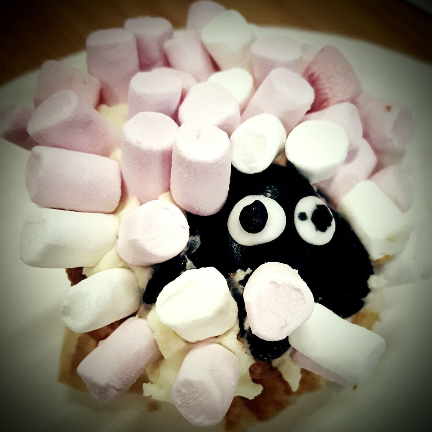 This Is Joy day 15. Marshmallows Sheep Sweet Food Close-up Marshmallow Messy Church