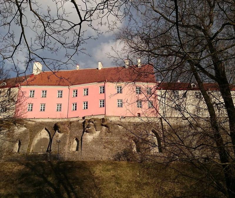 Architecture Tallinna Old Town Medieval Architecture Medieval Town Tranquility Spring Visittallinn ilovetallinn 💙tallinna Packyourthingsandtravel