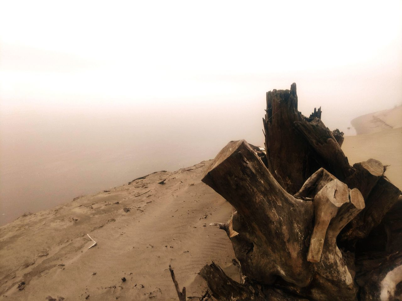 nature, tranquility, tranquil scene, scenics, no people, beauty in nature, outdoors, landscape, fog, sky, day, sea, sand, horizon over water, water, dead tree