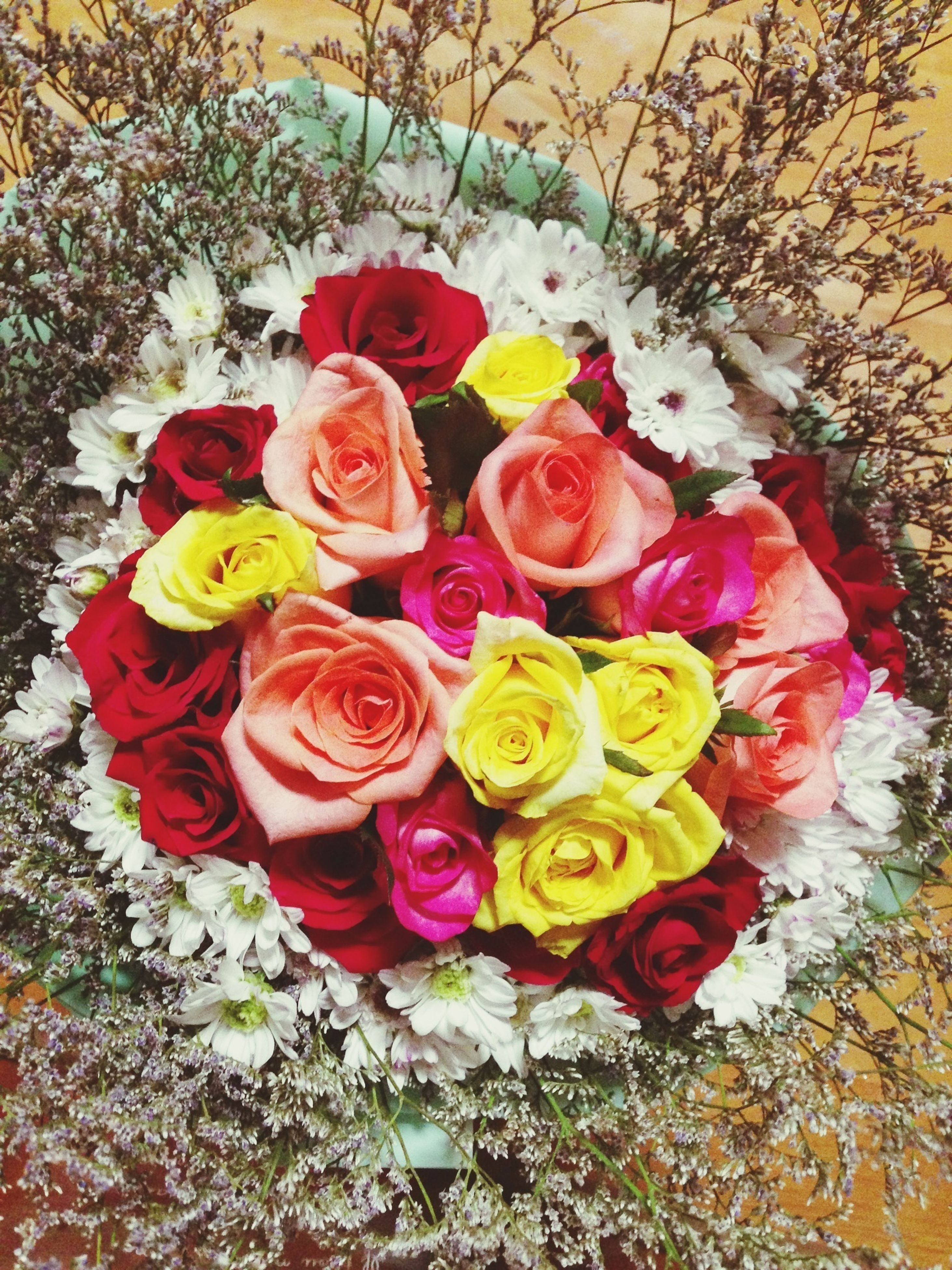 flower, petal, rose - flower, freshness, fragility, beauty in nature, flower head, high angle view, nature, growth, red, rose, blooming, plant, multi colored, pink color, close-up, no people, bouquet, day