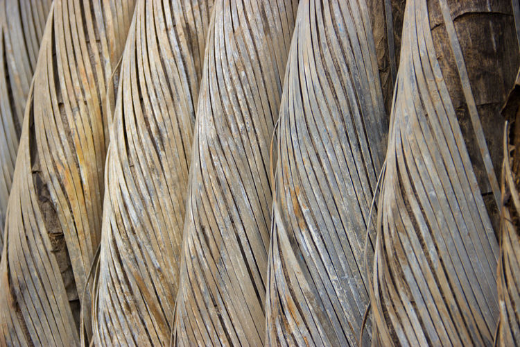 """wire"" Backgrounds Bamboo - Plant Brown Cable Close-up Construction Day Everyday Joy Full Frame Industry Junk Metal Metallic Nature No People Outdoors Pattern Random Rust Steal Strings Structure Travel Traveling Wire"