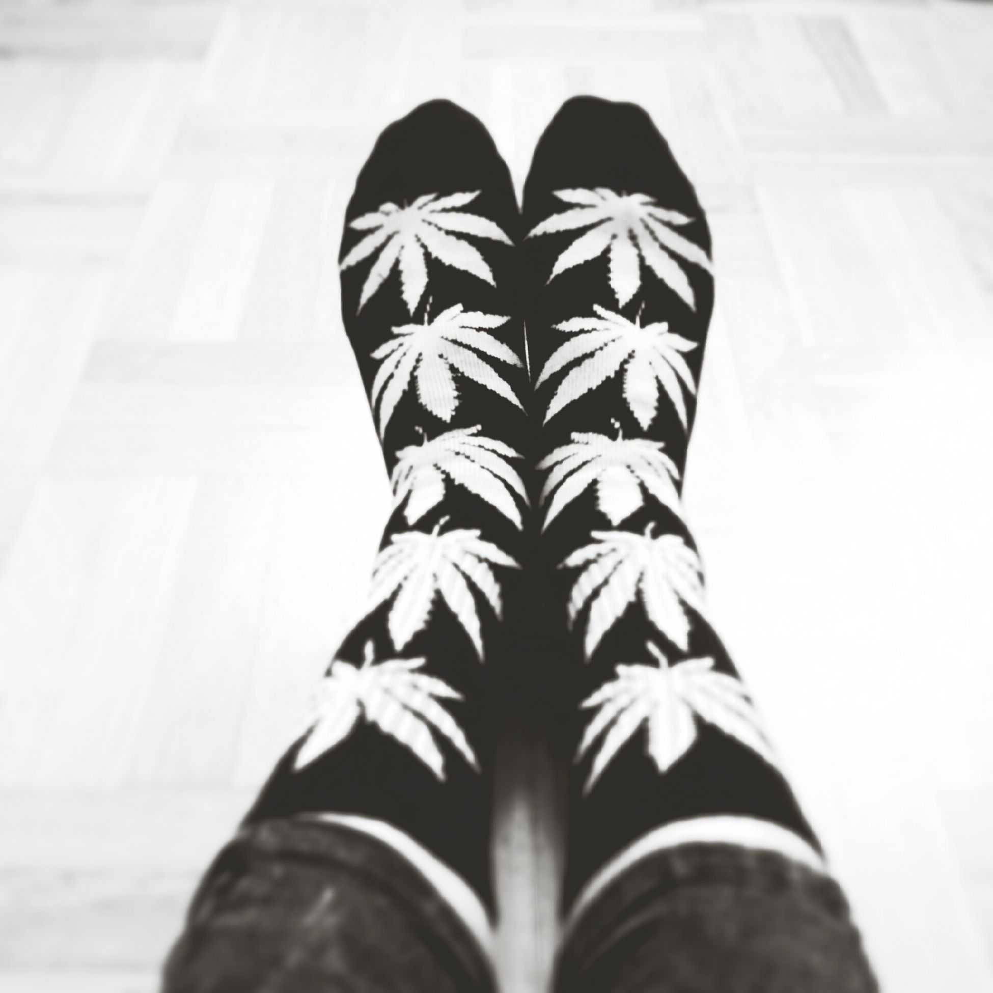 HUFsocks are best!*.* Lovelovelove Huf Socks Huffsocks <3 Hufsocks