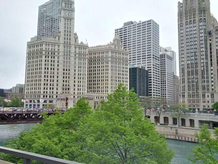 Chicago Architecture Chicago