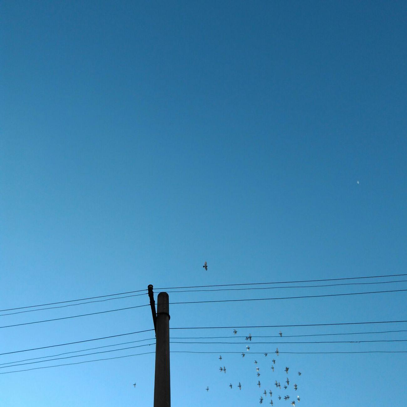 昆明 冬天 Blue Sky