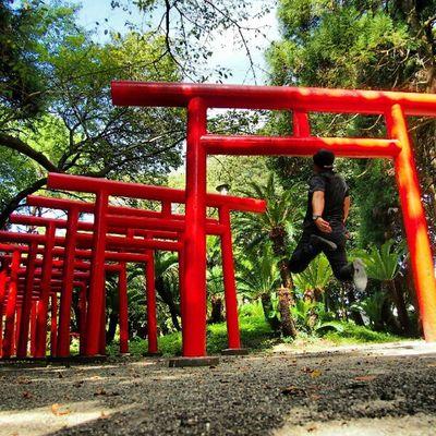 Today's Levitation no app #levitation#levitate#levitating #levitasihore#levitasi#moonleap #jump#whpjumpstagram#jumpstagram#me#japan#shadow#grasslevelseries#webstagram#instagram #photooftheday #instadaily #instagood#igers#follow#picoftheday Igers Jumpstagram Me Instagood Happy Instagramhub Shadow Webstagram Jump Instadaily TORII Tweetgram Levitation Grasslevelseries Japan Moonleap Photooftheday Whpjumpstagram Instagram Levitate Picoftheday Levitasi Levitating Levitasihore Follow Photogramers Instamood Bestoftheday