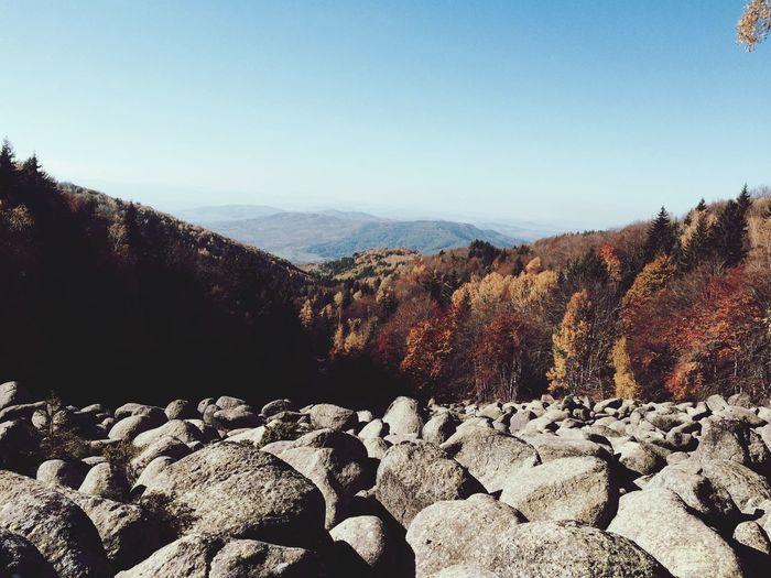 Discover Your City Vitosha/sofia Colors Of Autumn EyeEm Nature Lover