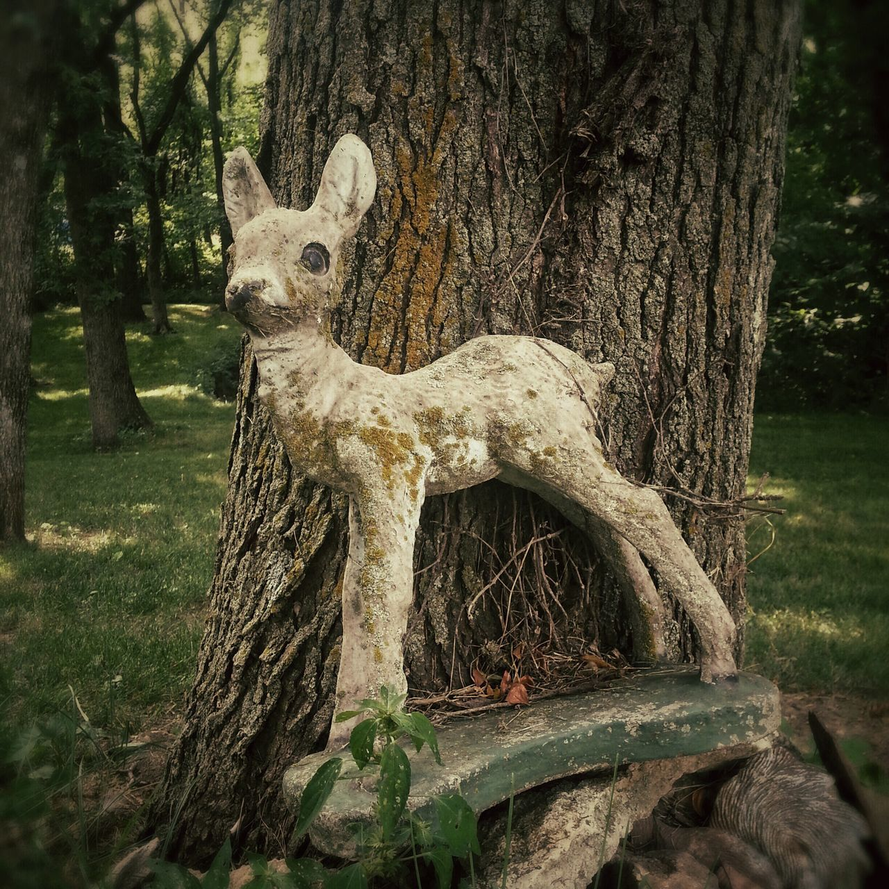 Abandoned Deer Figurine Leaning On Tree Trunk In Forest